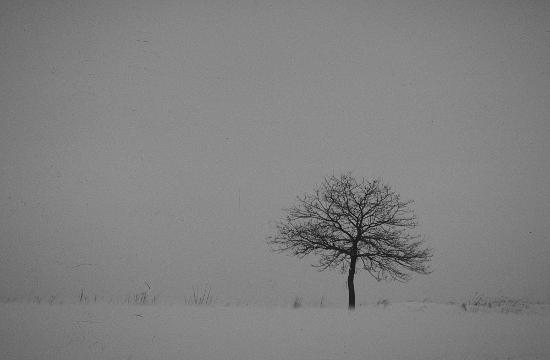Samotność Fot: Łukasz Stępień
